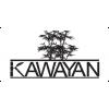 Kawayan